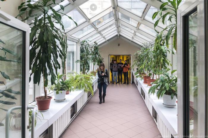 Экскурсия по зданию МУРа (56 фото)