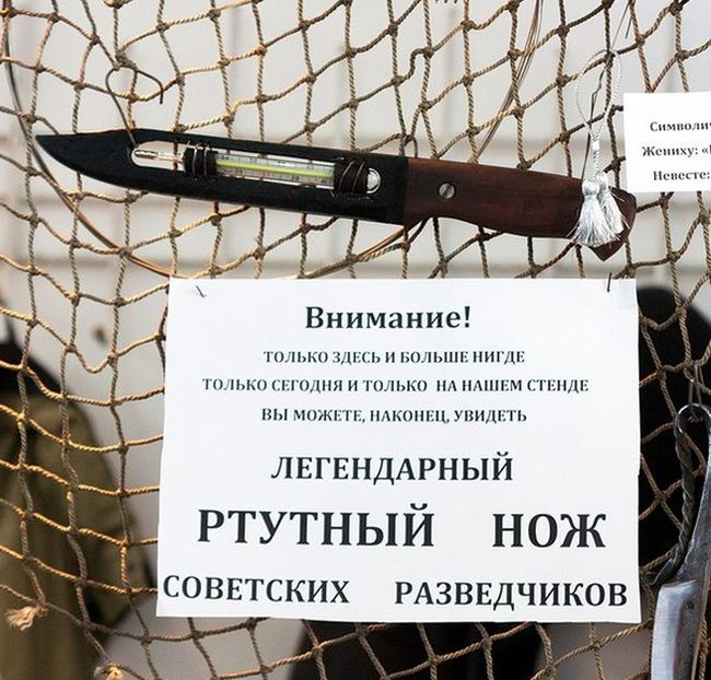 http://trinixy.ru/pics5/20151111/podborka_dnevnaya_23.jpg