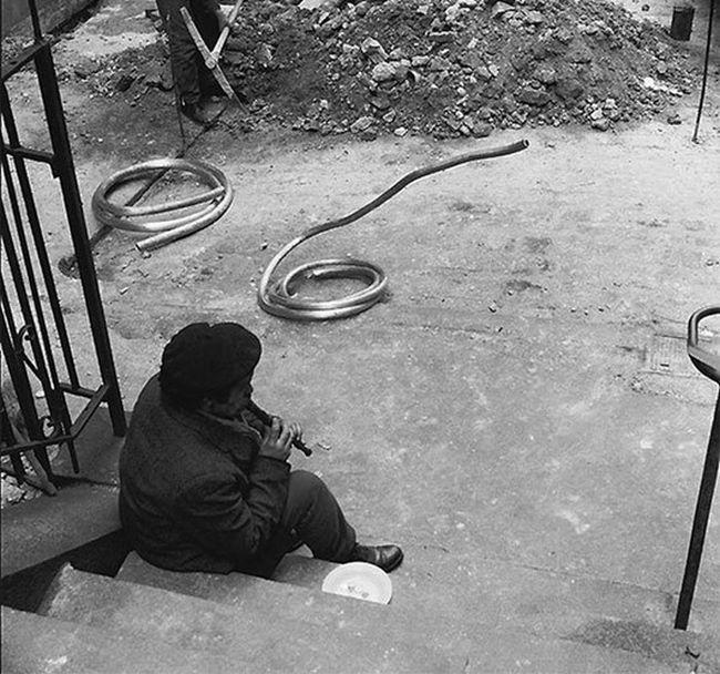 Забавные моменты повседневной жизни на фото Рене Мальтета (20 фото)