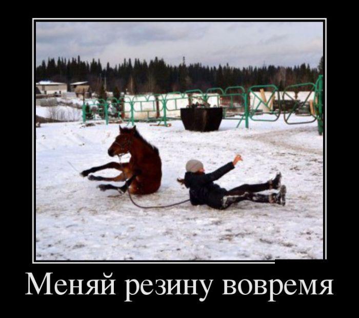 http://cdn.trinixy.ru/pics5/20151112/demotivatory_11.jpg