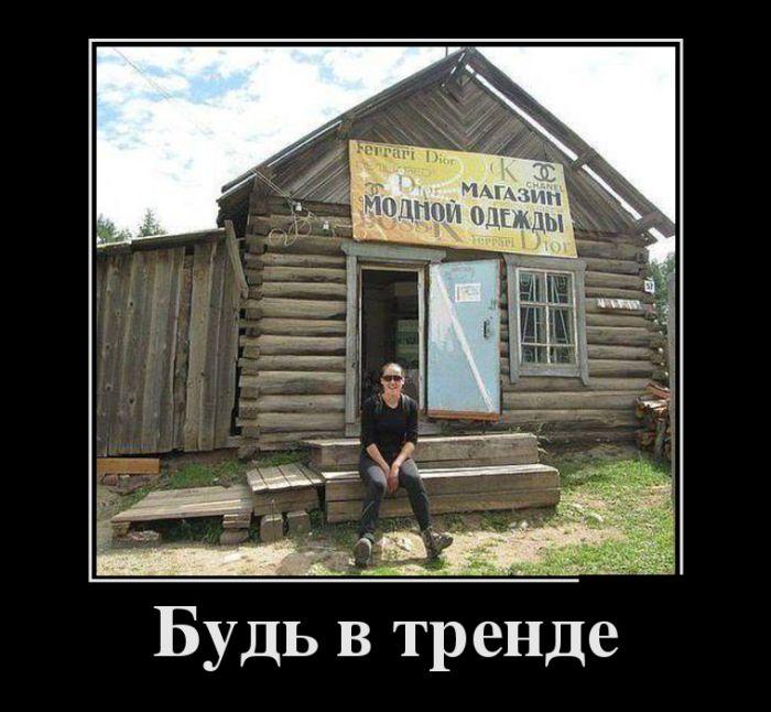 http://cdn.trinixy.ru/pics5/20151112/demotivatory_20.jpg