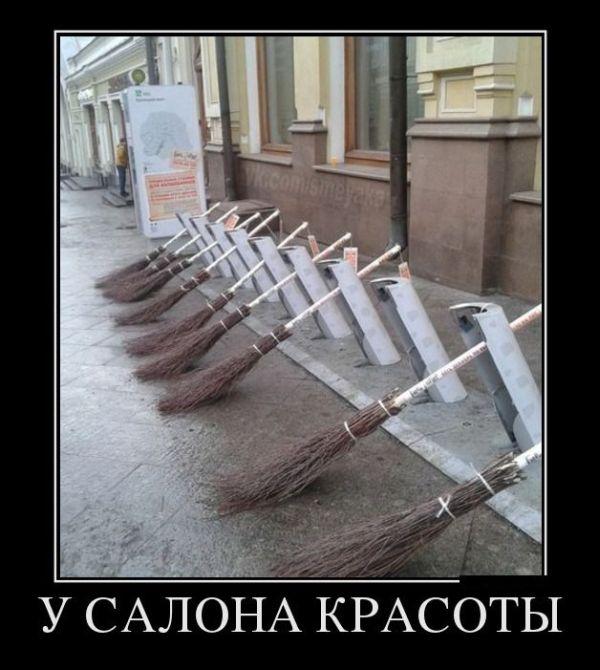 http://cdn.trinixy.ru/pics5/20151112/demotivatory_23.jpg