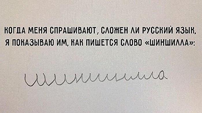 Любопытные факты о русском языке (6 фото)