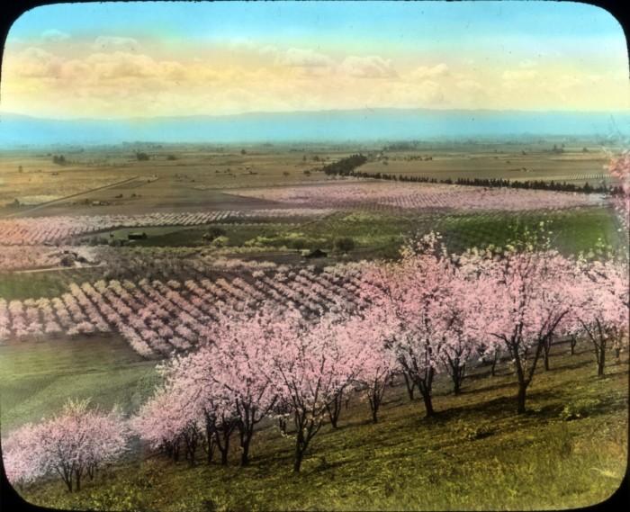 История развития Кремниевой долины в США (34 фото)