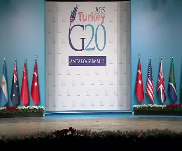 Любопытные коты на саммите G20
