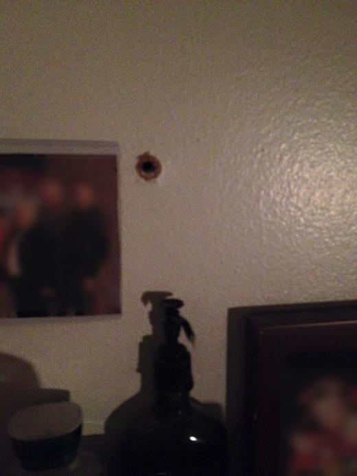 Пуля влетела в дом (6 фото)