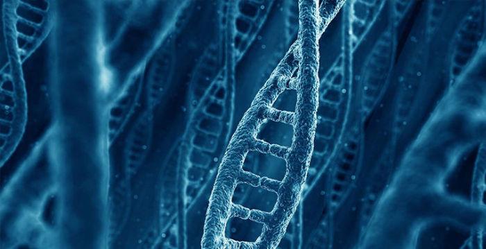 Загадки природы, которые удалось разгадать ученым (23 фото + видео)