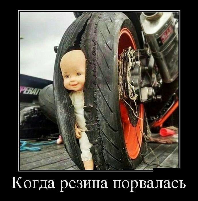 http://cdn.trinixy.ru/pics5/20151119/demotivatory_15.jpg