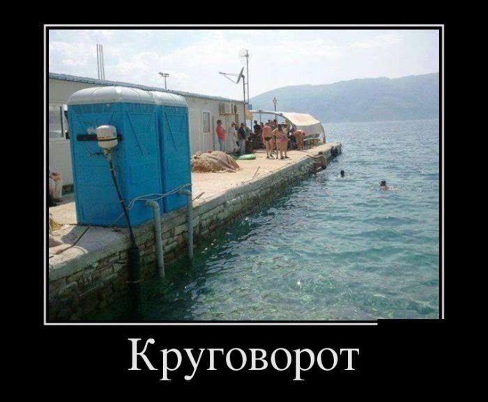 http://cdn.trinixy.ru/pics5/20151119/demotivatory_24.jpg