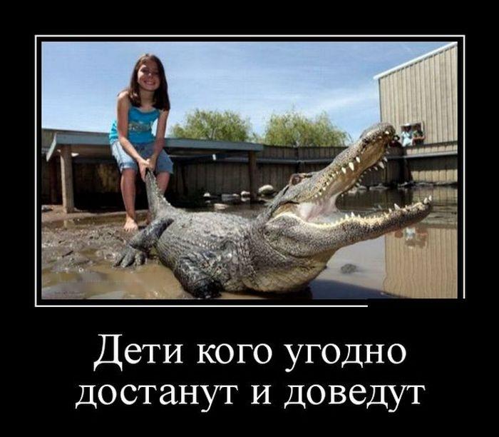 http://cdn.trinixy.ru/pics5/20151119/demotivatory_27.jpg