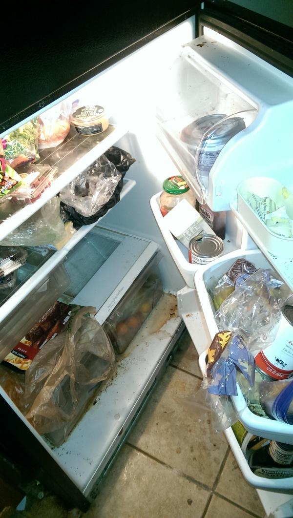 В такой холодильник мало кто рискнет положить свои продукты (7 фото)