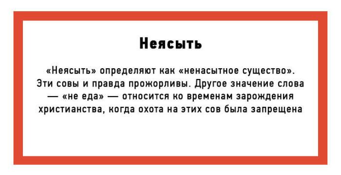История происхождения некоторых слов русского языка (10 картинок)