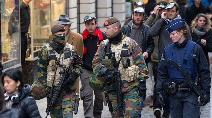 Вместо фотографий антитеррористической операции в Брюсселе начали публиковать фото с котами (21 фото)