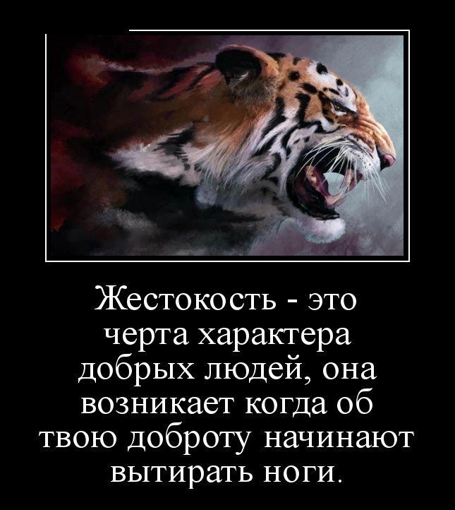 http://cdn.trinixy.ru/pics5/20151126/demotivatory_25.jpg