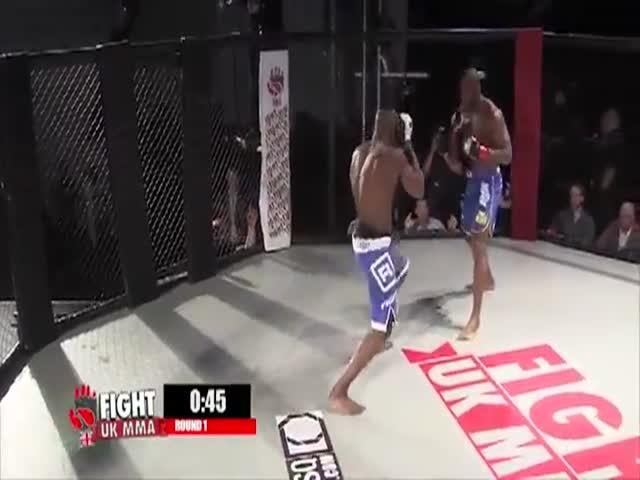 Судья вынужден был применить силу, чтоб успокоить бойца MMA