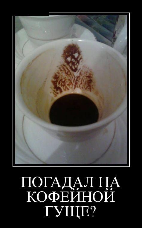 http://cdn.trinixy.ru/pics5/20151210/demotivatory_07.jpg