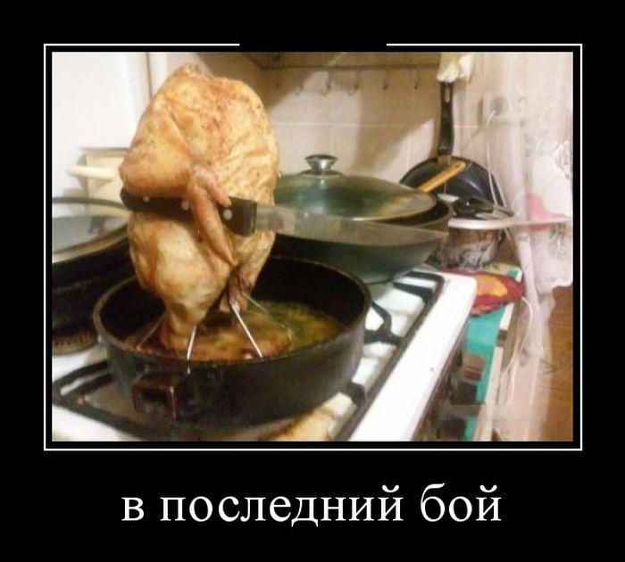 http://cdn.trinixy.ru/pics5/20151210/demotivatory_12.jpg