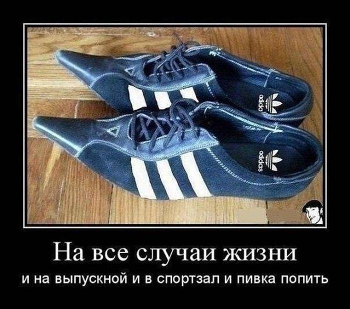 http://cdn.trinixy.ru/pics5/20151210/demotivatory_16.jpg