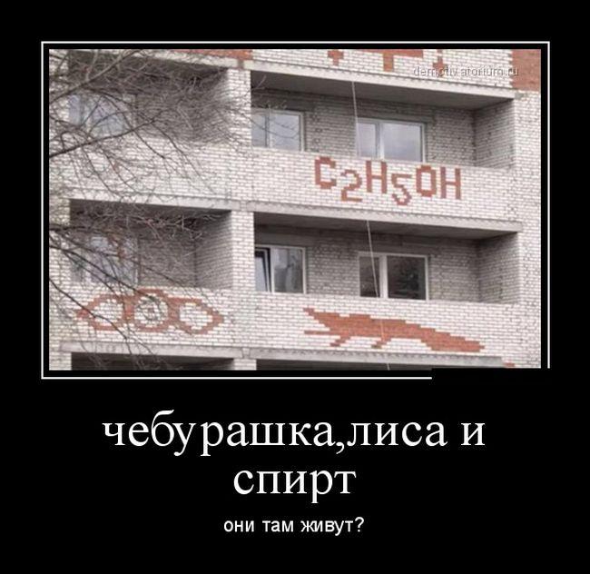 http://cdn.trinixy.ru/pics5/20151210/demotivatory_18.jpg
