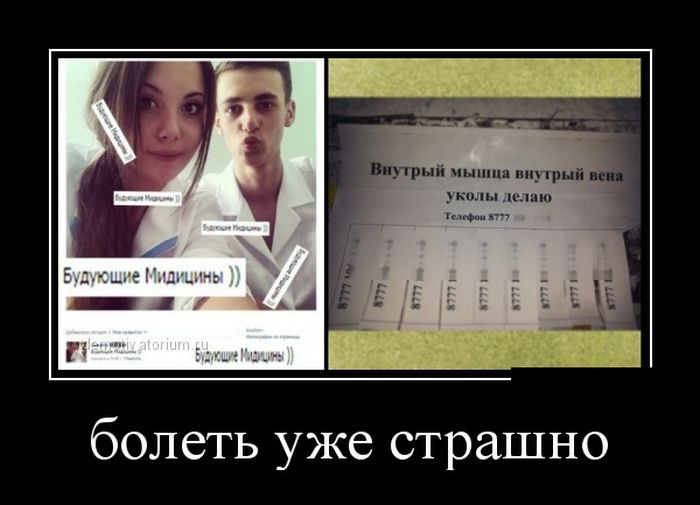http://cdn.trinixy.ru/pics5/20151210/demotivatory_19.jpg