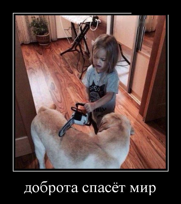 http://cdn.trinixy.ru/pics5/20151210/demotivatory_20.jpg