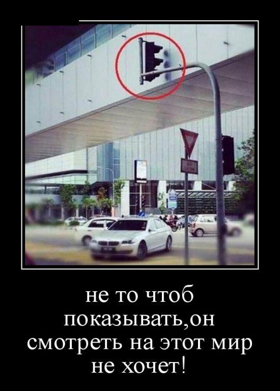 http://cdn.trinixy.ru/pics5/20151210/demotivatory_21.jpg