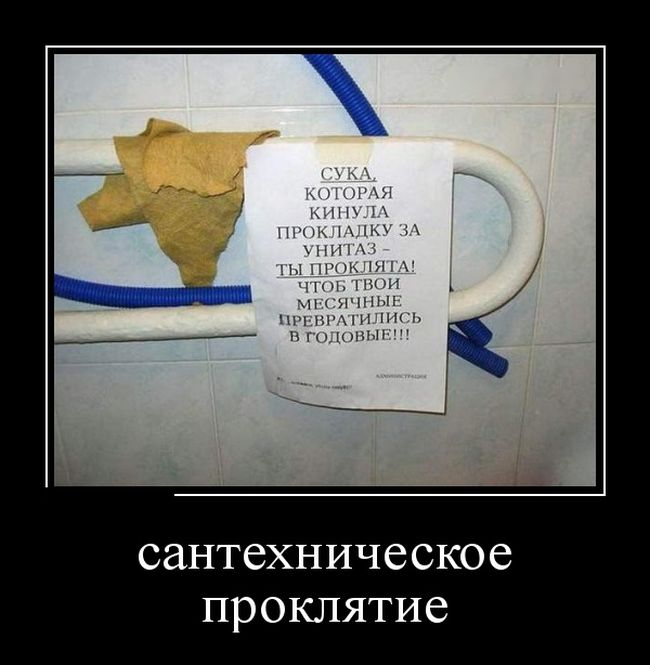 http://cdn.trinixy.ru/pics5/20151210/demotivatory_24.jpg