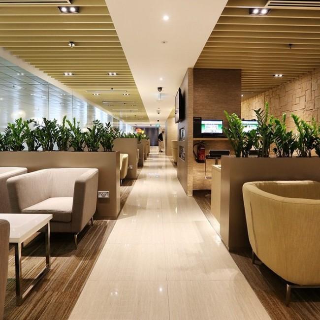 Сингапурский аэропорт Чанги вновь признан лучшим аэропортом мира (30 фото)
