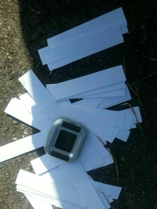 На борту самолета Air France обнаружили муляж взрывного устройства (2 фото)