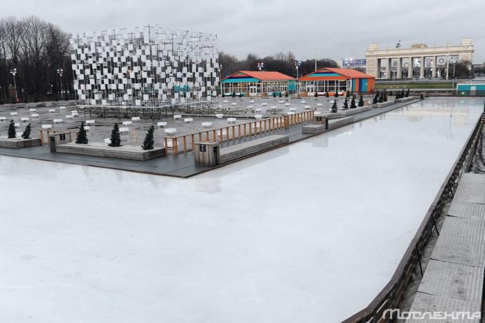 Последствия аномально теплой погоды в Москве (20 фото)