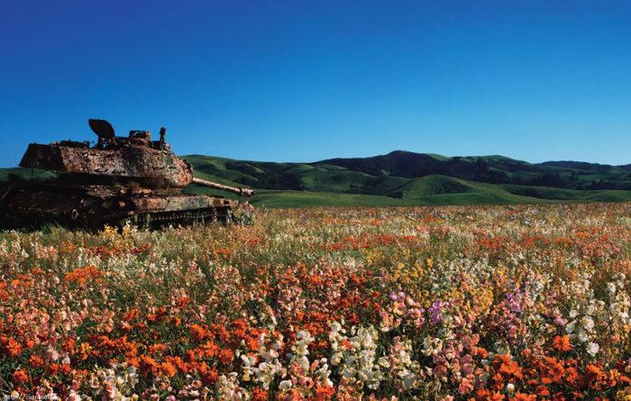 Забытые танки на полях сражений (33 фото)