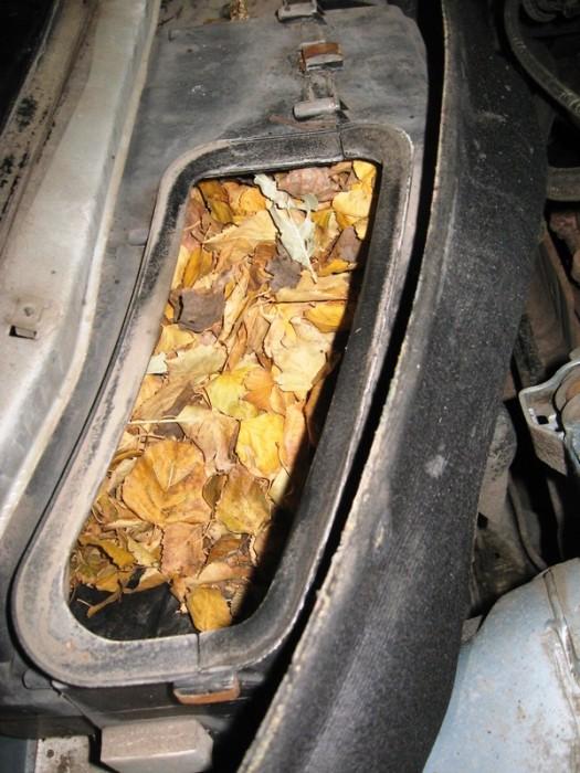Причины некоторых поломок автомобилей (11 фото)