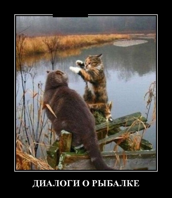 http://cdn.trinixy.ru/pics5/20151224/demotivatory_29.jpg