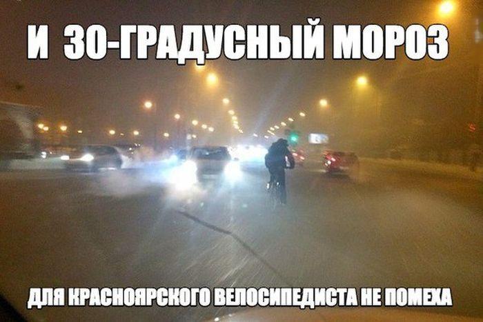 http://cdn.trinixy.ru/pics5/20151224/podborka_vecher_14.jpg
