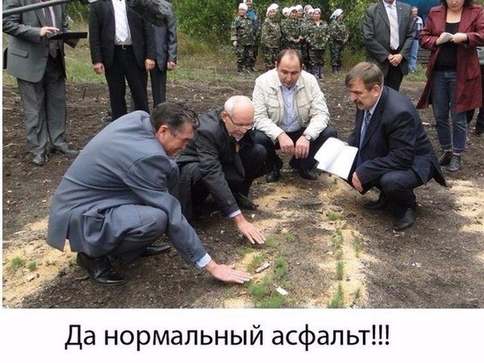 http://cdn.trinixy.ru/pics5/20151224/podborka_vecher_30.jpg