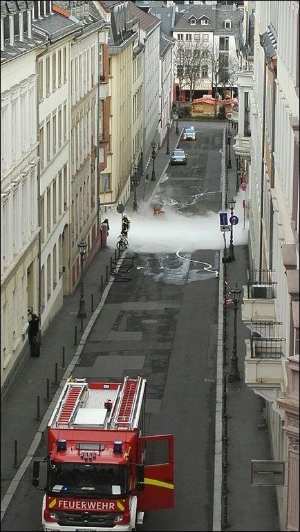 Белый «туман» укутал дорогу в Майнце (6 фото)