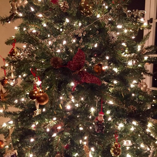 Как зарубежные звезды отмечали Рождество (25 фото)
