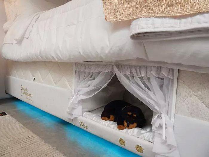 Оригинальная кровать для любителей домашних животных (6 фото)