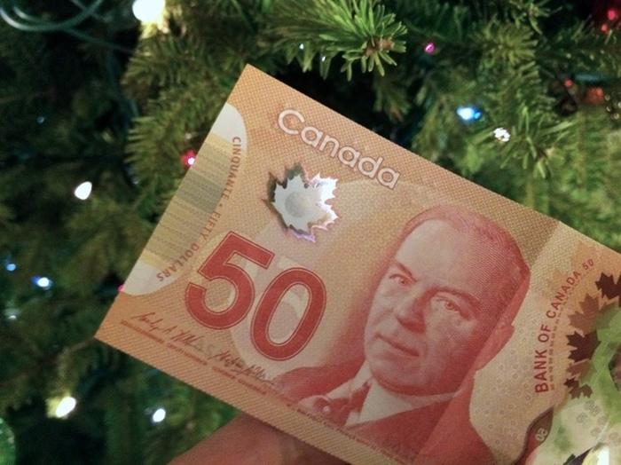 Новые канадские доллары (7 фото)