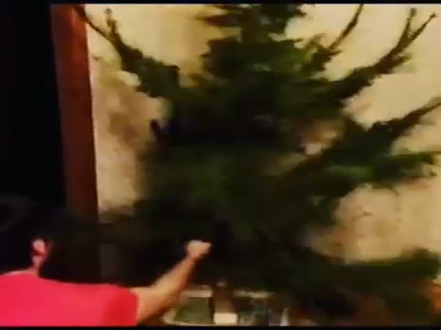 Новогодняя елка на седьмой день
