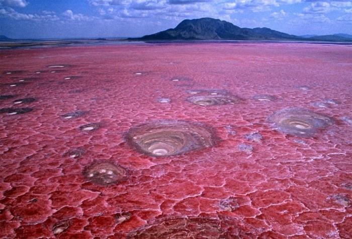 Удивительные явления природы (23 фото)