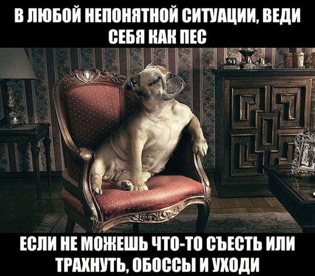 http://cdn.trinixy.ru/pics5/20160114/podborka_vecher_55.jpg