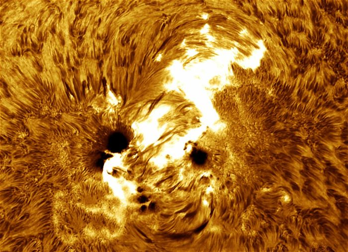 Удивительные научные снимки (10 фото)