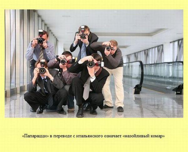 Любопытные факты обо всем на свете (30 картинка)
