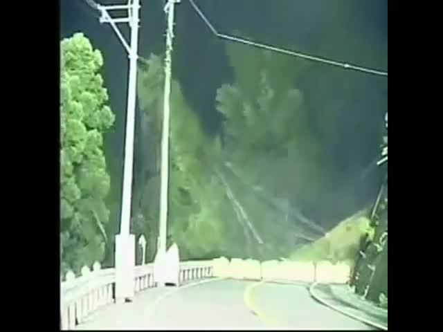 Лесной оползень