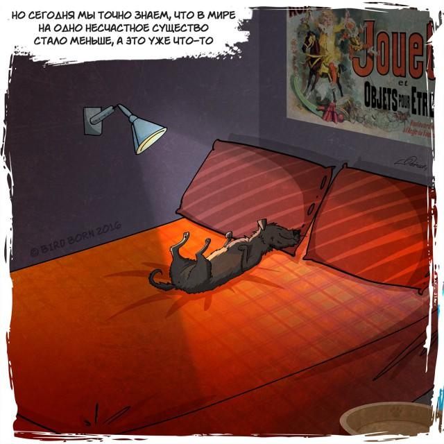 Собака из приюта. История в картинках (20 картинок)