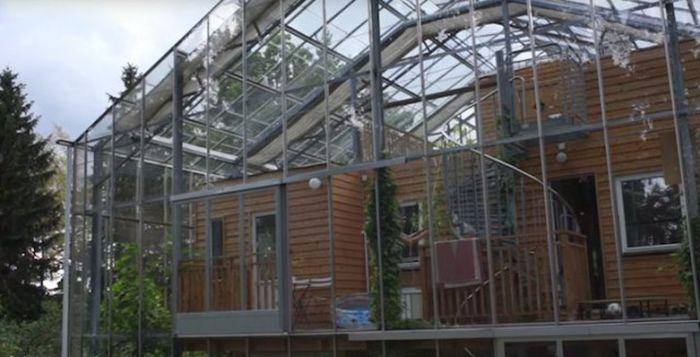Шведская пара построила большую теплицу поверх дома (7 фото)