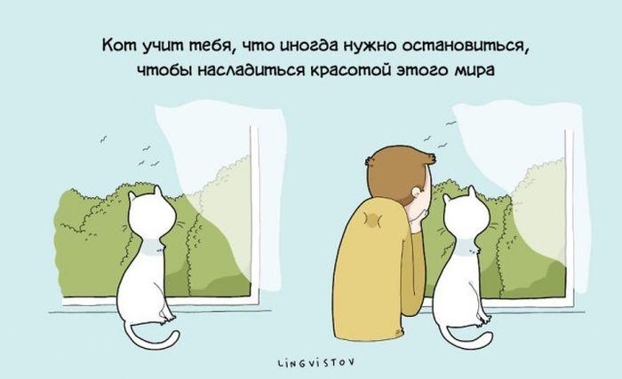 Преимущества жизни с котом в веселых комиксах (22 картинки)