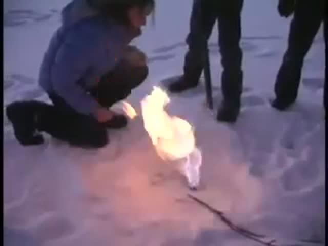 Сжигание метана чуть не закончилось трагедией