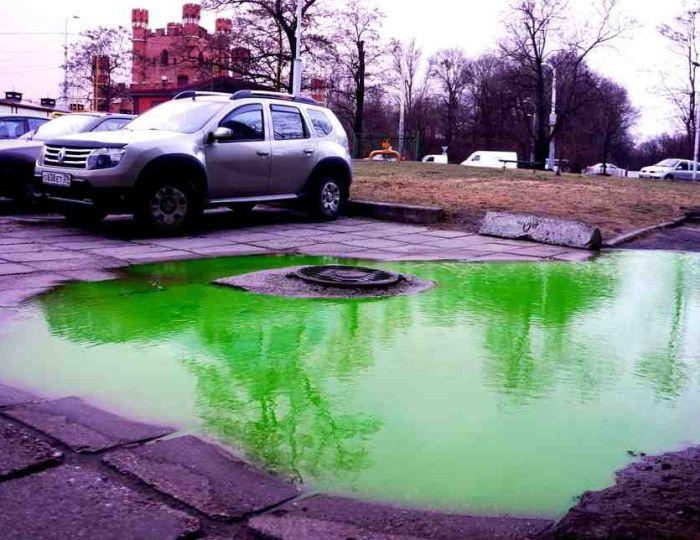 В центре Калининграда появились ярко-зеленые лужи (2 фото + 2 видео)